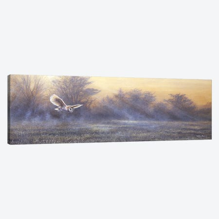 Morning Mist - Barn Owl Canvas Print #JYP74} by Jeremy Paul Canvas Print