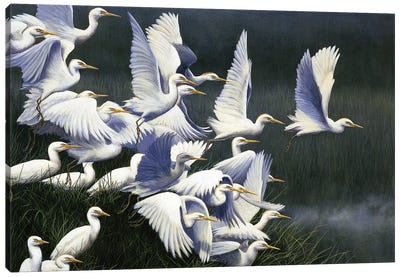 Flight Of Egrets Canvas Art Print