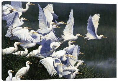 Flight Of Egrets Canvas Art Print