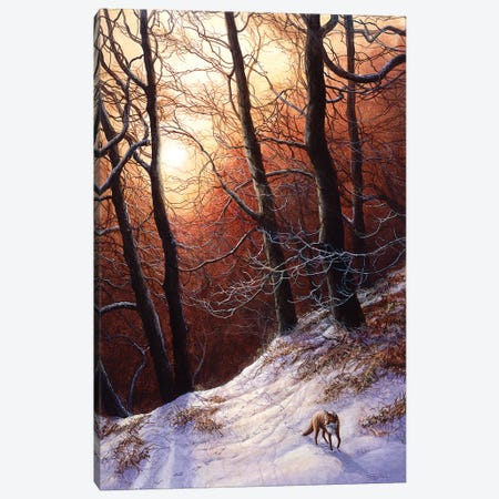 Winter Return - Fox Canvas Print #JYP79} by Jeremy Paul Canvas Artwork