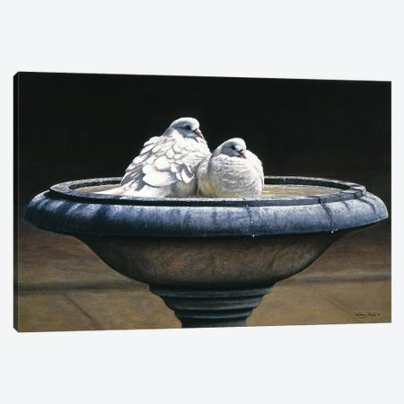 Bird Bath Canvas Print #JYP80} by Jeremy Paul Art Print