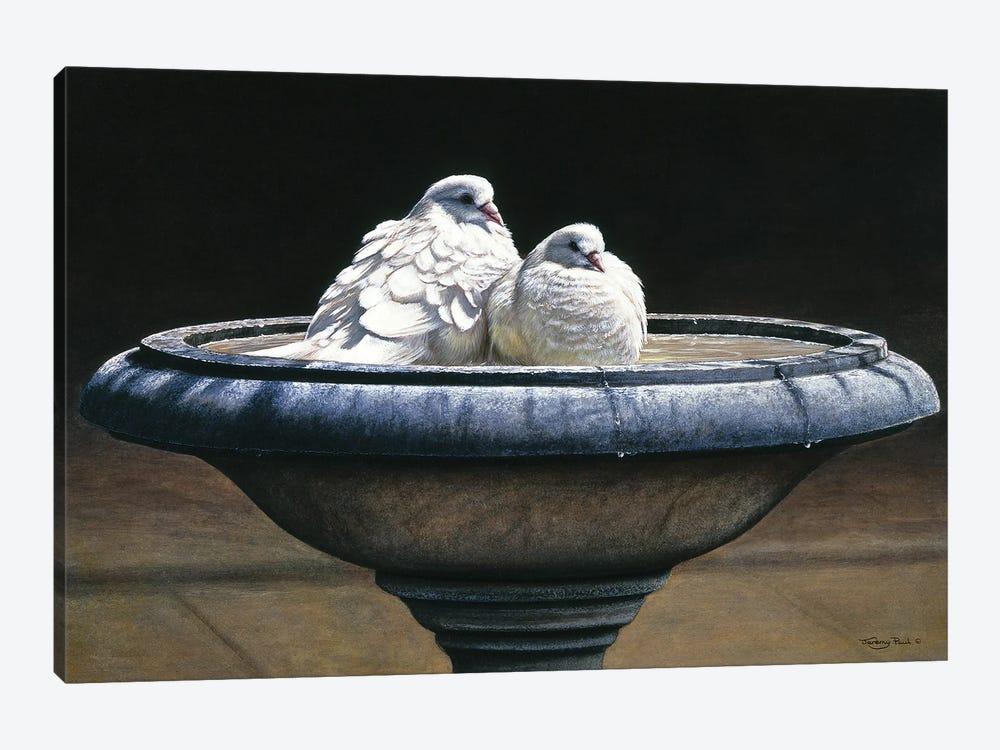 Bird Bath by Jeremy Paul 1-piece Art Print