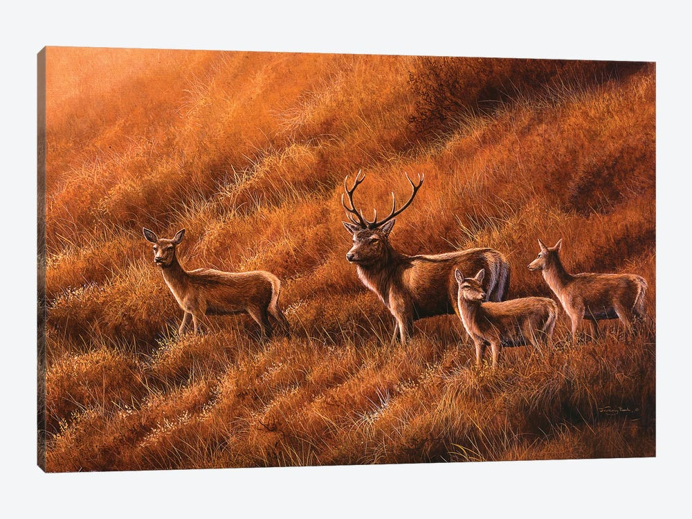 Autumn Hill - Stag And Hinds by Jeremy Paul 1-piece Art Print