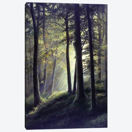 Summer Glade - Green Woodpecker Canvas Print #JYP89} by Jeremy Paul Canvas Print