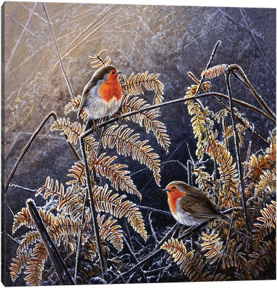 Frosted Gold - Robins Canvas Art Print