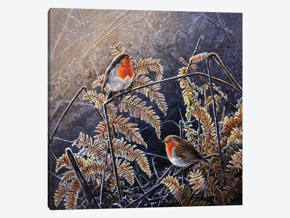 Frosted Gold - Robins by Jeremy Paul 1-piece Canvas Art