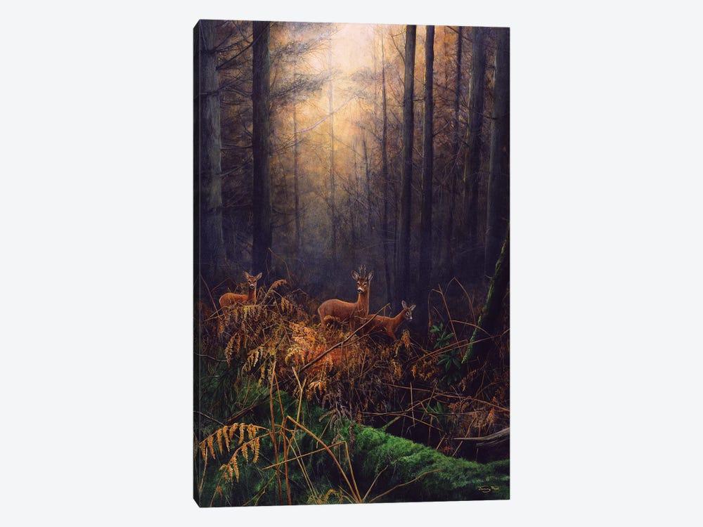 Autumn Mist - Roe Deer by Jeremy Paul 1-piece Canvas Art Print