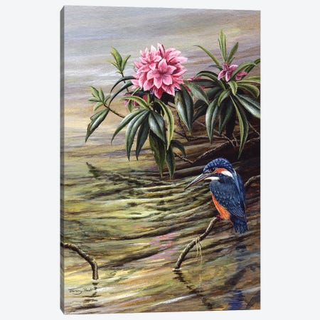 Kingfisher And Rhododendron Canvas Print #JYP95} by Jeremy Paul Canvas Art Print