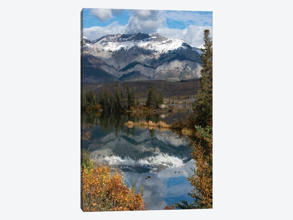 Canada, Alberta. Autumn reflections at Talbot Lake, Jasper National Park. by Judith Zimmerman 1-piece Art Print