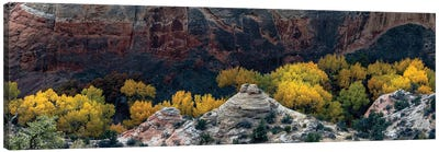 USA, Utah. Autumn cottonwoods and sandstone formations in canyon, Grand Staircase-Escalante National Monument. Canvas Art Print
