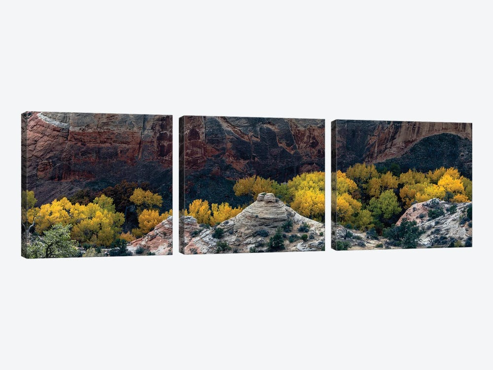USA, Utah. Autumn cottonwoods and sandstone formations in canyon, Grand Staircase-Escalante National Monument. by Judith Zimmerman 3-piece Canvas Artwork