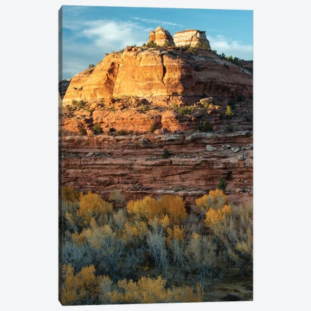 USA, Utah. Last light on sandstone monolith with autumn cottonwoods, Grand Staircase-Escalante National Monument. Canvas Print #JZI18} by Judith Zimmerman Art Print