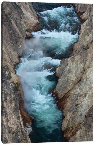 USA, Wyoming. Yellowstone River, Grand Canyon of the Yellowstone, Yellowstone National Park. Canvas Art Print