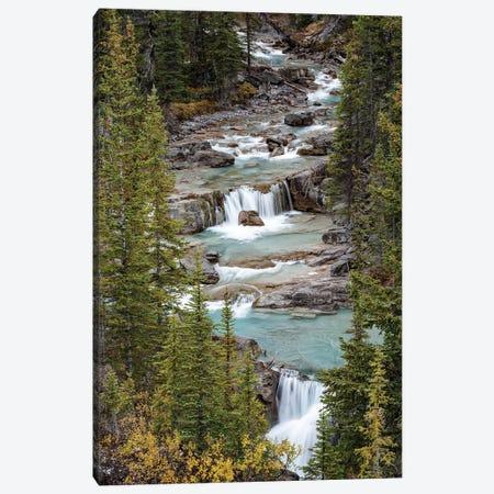 Canada, Alberta. Nigel Creek, Banff National Park. Canvas Print #JZI9} by Judith Zimmerman Canvas Artwork