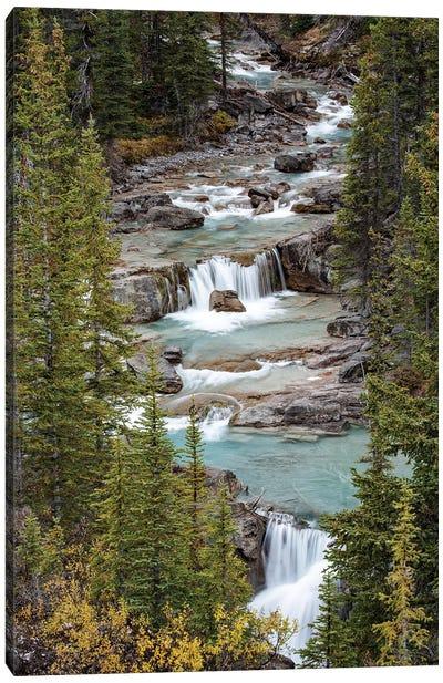 Canada, Alberta. Nigel Creek, Banff National Park. Canvas Art Print