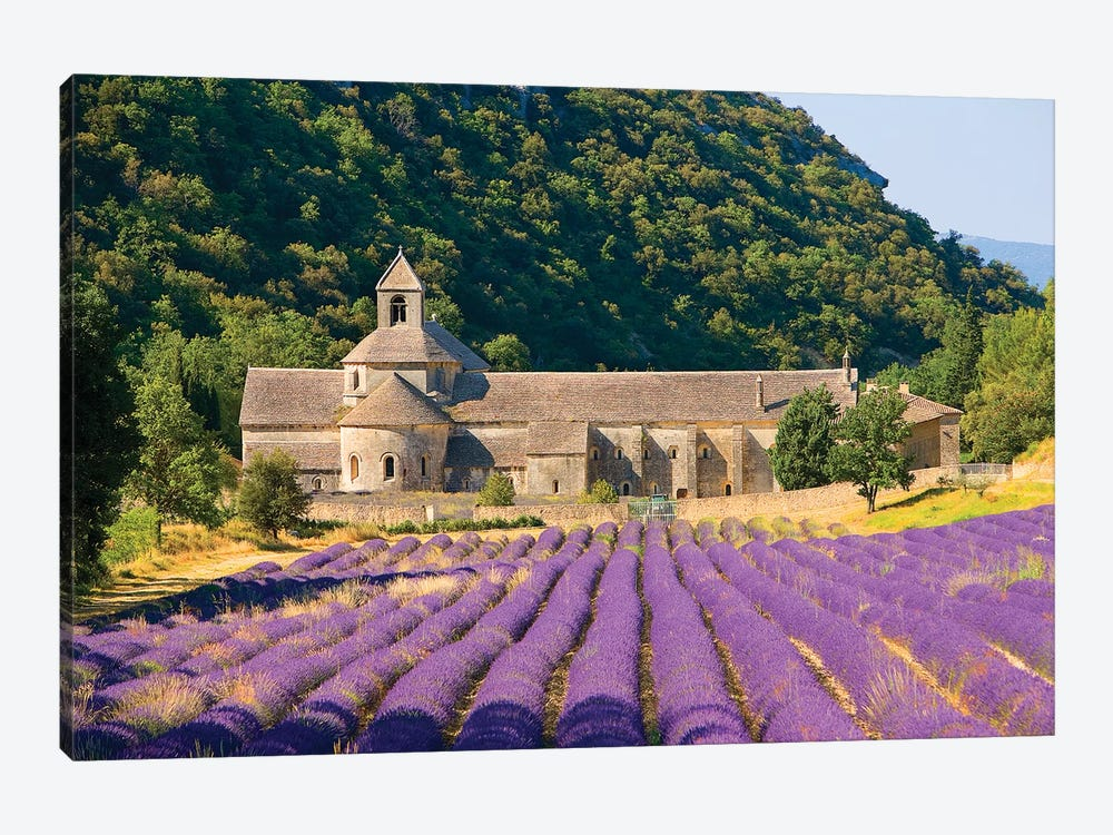 Lavender Field, Senanque Abbey, Near Gordes, Provence-Alpes-Cote d'Azur, France by Jim Zuckerman 1-piece Canvas Art Print