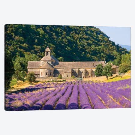 Lavender Field, Senanque Abbey, Near Gordes, Provence-Alpes-Cote d'Azur, France Canvas Print #JZU1} by Jim Zuckerman Art Print