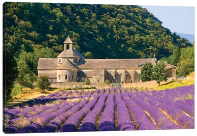 Lavender Field, Senanque Abbey, Near Gordes, Provence-Alpes-Cote d'Azur, France Canvas Art Print