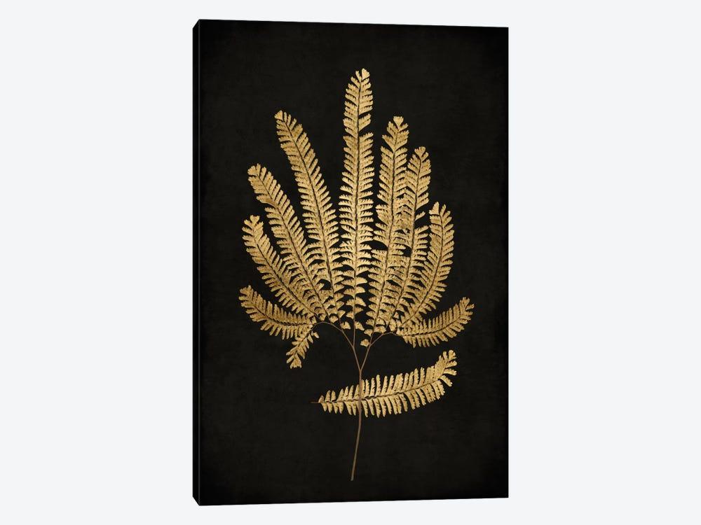 Golden Nature II by Kate Bennett 1-piece Art Print