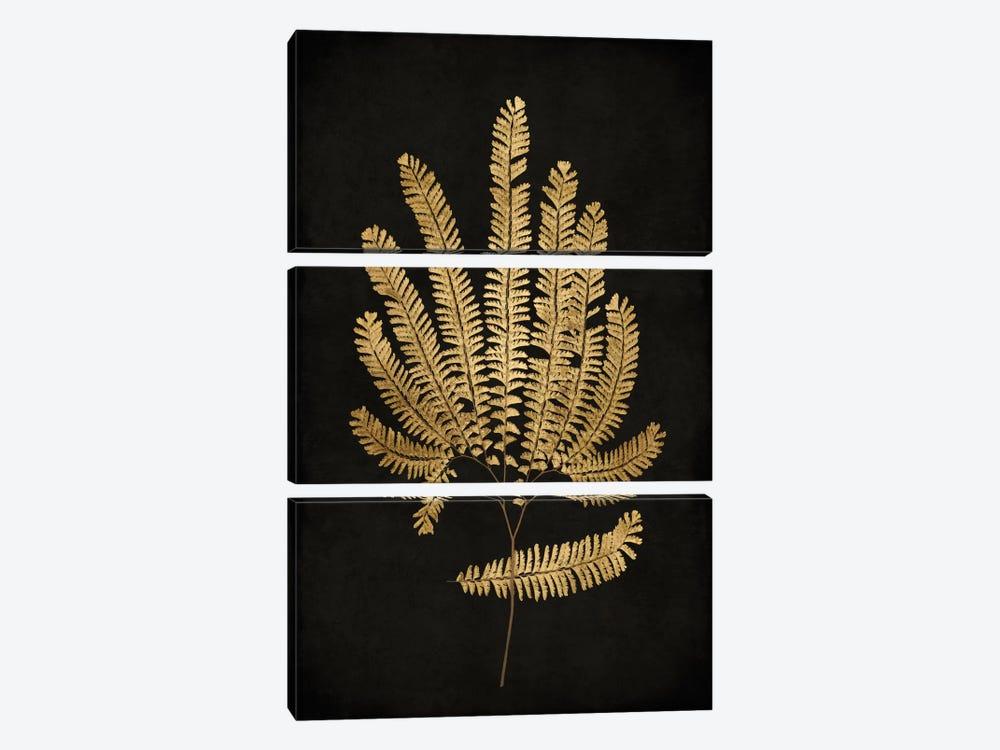 Golden Nature II by Kate Bennett 3-piece Canvas Art Print