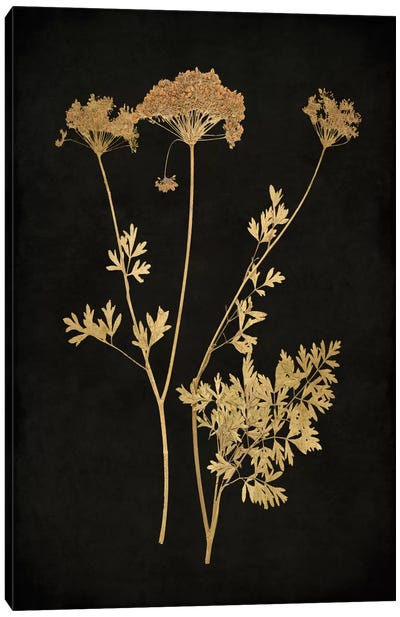 Golden Nature III Canvas Art Print