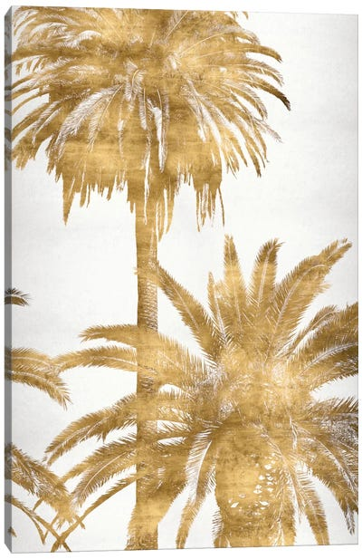 Golden Palms Panel IV Canvas Art Print