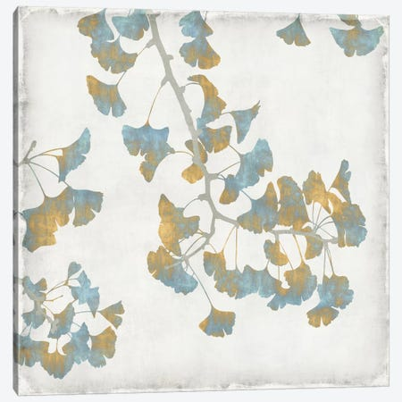 Ginkgo Branches I Canvas Print #KAB1} by Kate Bennett Canvas Print
