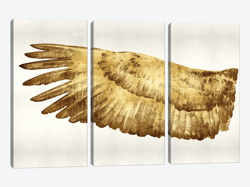Golden Wing I by Kate Bennett 3-piece Canvas Art Print