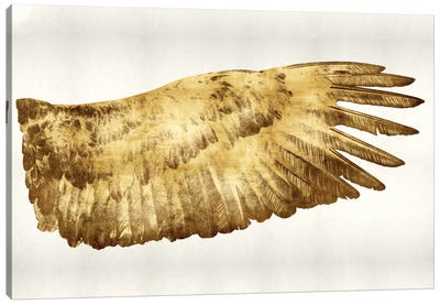 Golden Wing II Canvas Art Print