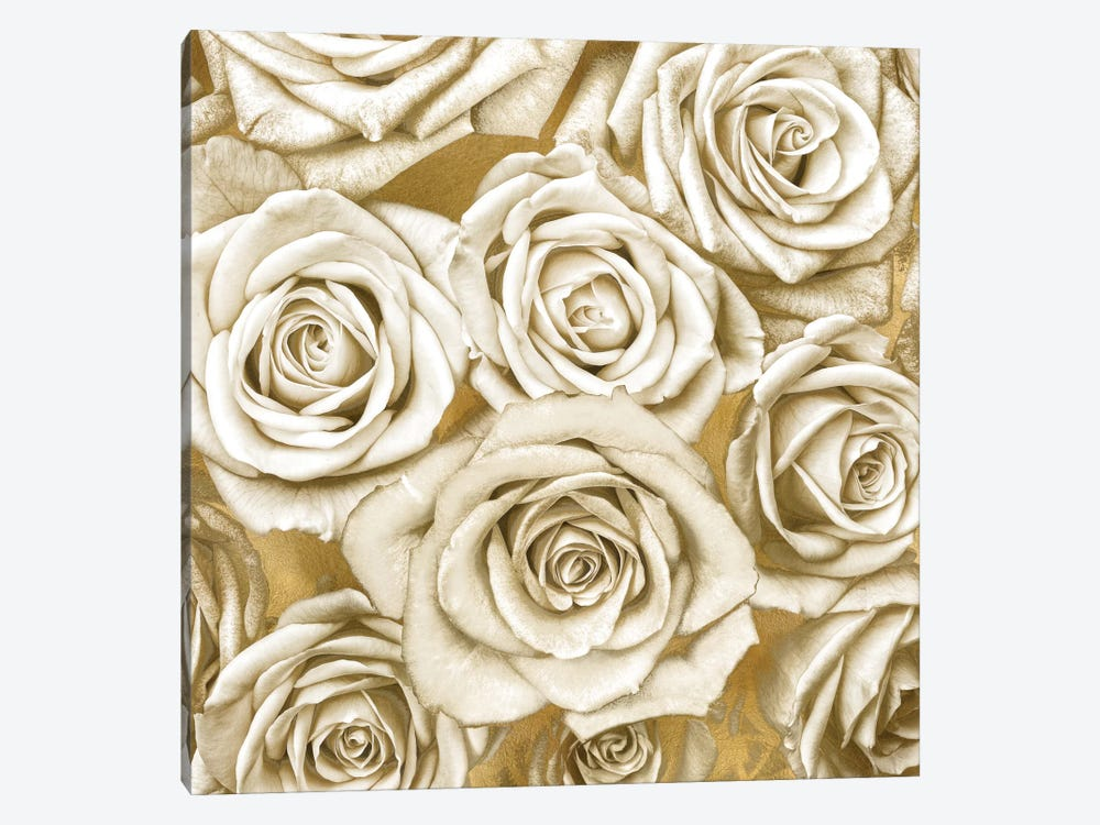 Ivory Roses On Gold by Kate Bennett 1-piece Canvas Wall Art