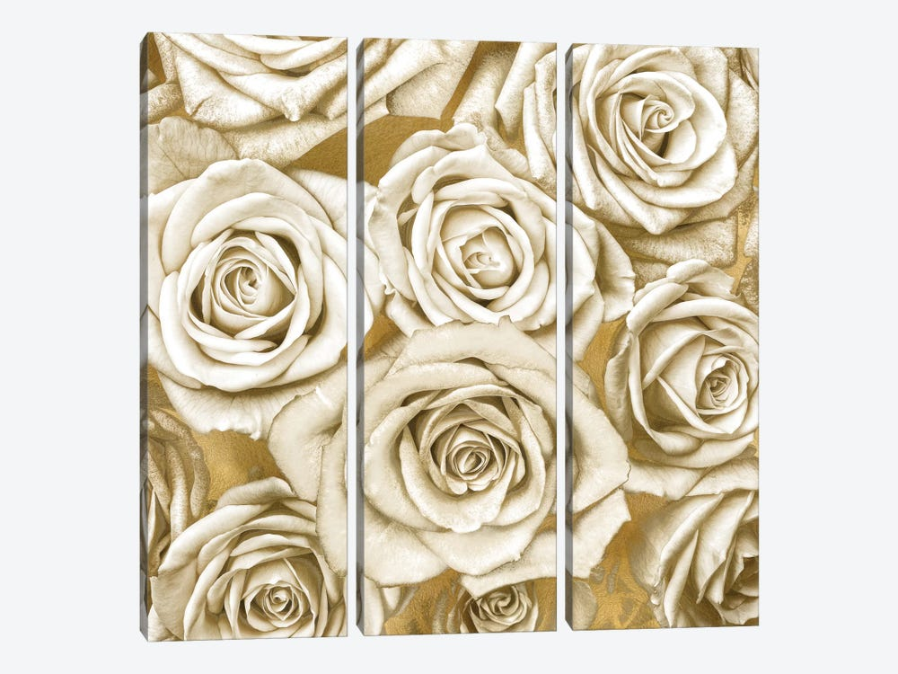Ivory Roses On Gold by Kate Bennett 3-piece Canvas Art