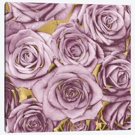 Roses - Amethyst On Gold Canvas Print #KAB33} by Kate Bennett Canvas Artwork