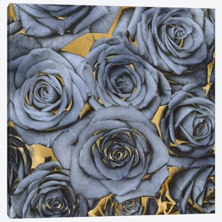 Roses - Blue On Gold Canvas Print #KAB34} by Kate Bennett Canvas Art Print