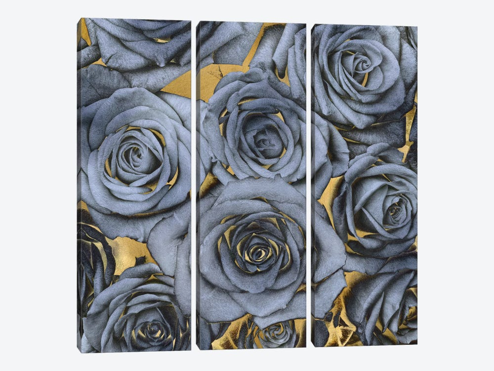 Roses - Blue On Gold by Kate Bennett 3-piece Canvas Artwork