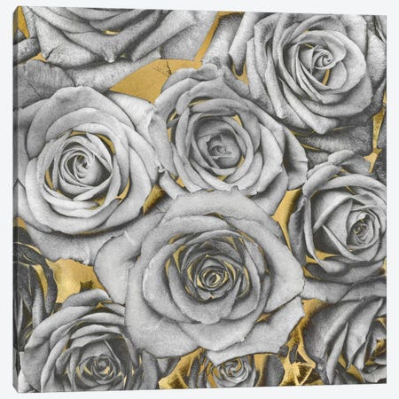Roses - Silver On Gold Canvas Print #KAB36} by Kate Bennett Canvas Art Print