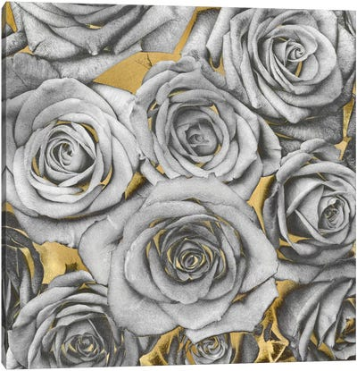 Roses - Silver On Gold Canvas Print #KAB36