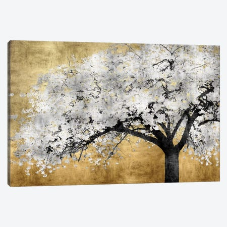 Silver Blossoms Canvas Print #KAB39} by Kate Bennett Canvas Art