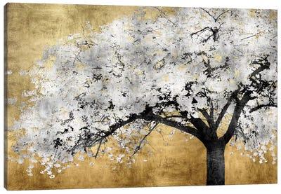 Silver Blossoms Canvas Art Print
