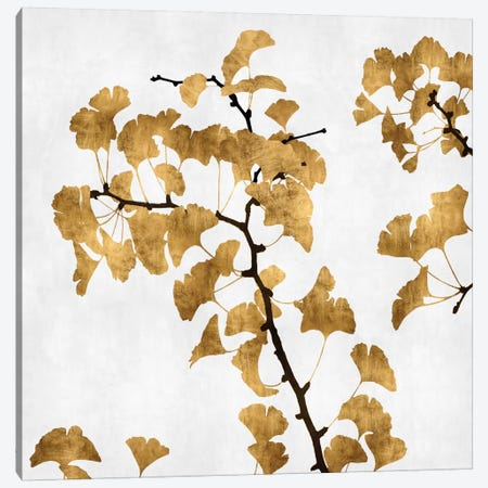 Ginkgo In Gold I Canvas Print #KAB3} by Kate Bennett Canvas Art Print