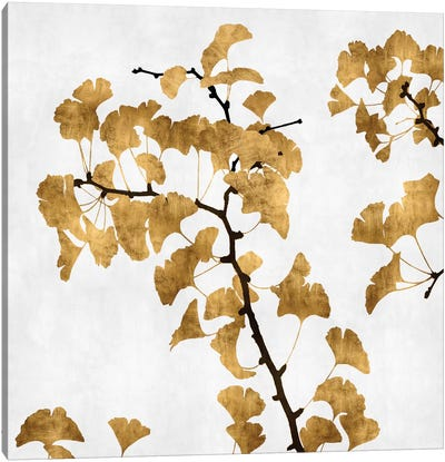 Ginkgo In Gold I Canvas Art Print
