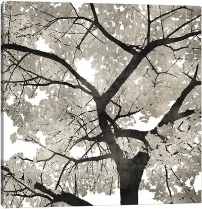 Silver Leaves Canvas Art Print