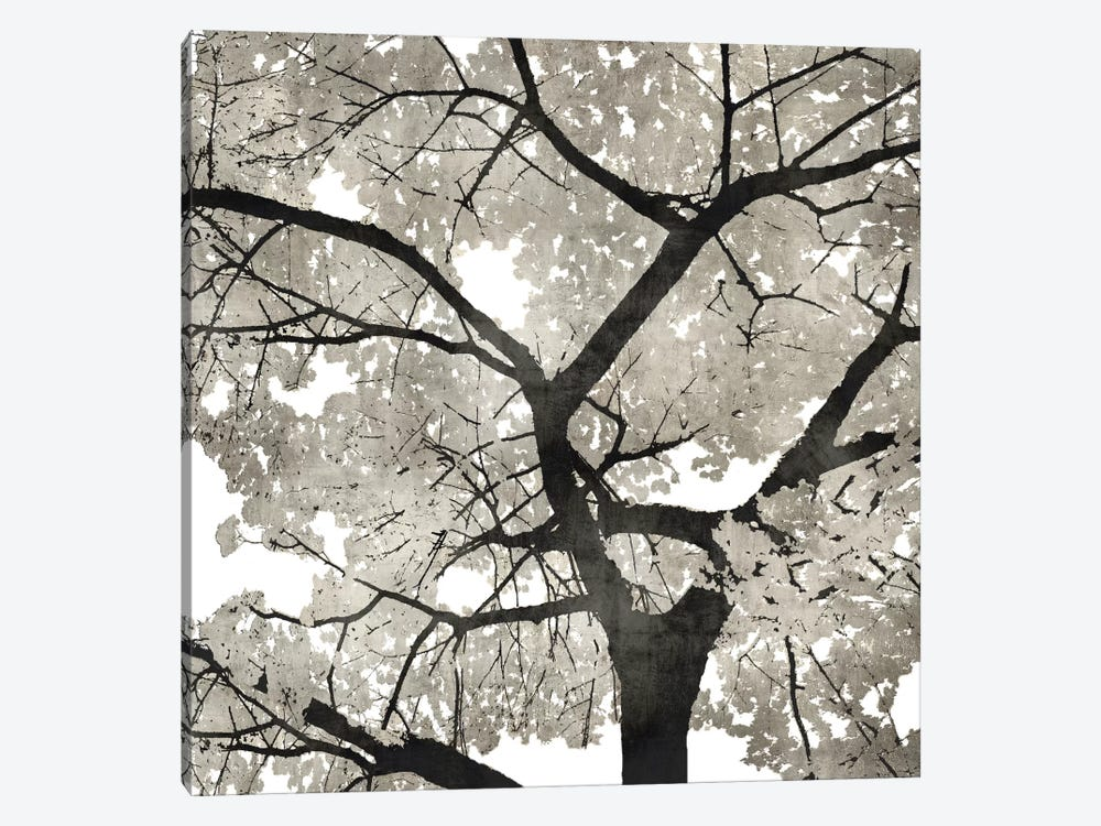 Silver Leaves by Kate Bennett 1-piece Canvas Print
