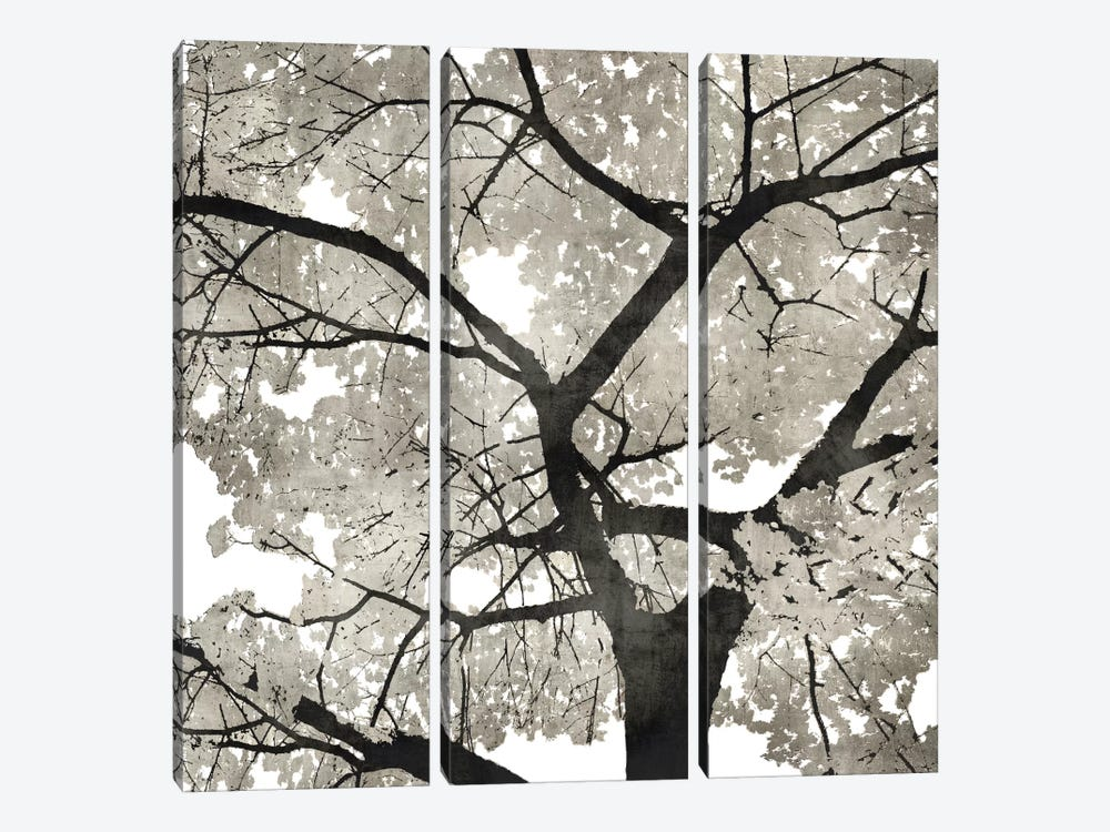 Silver Leaves by Kate Bennett 3-piece Art Print