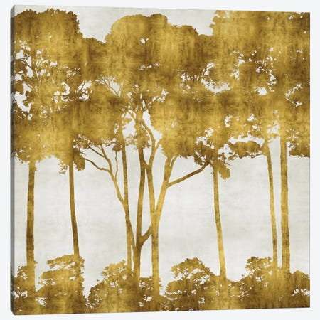 Tree Lined In Gold I Canvas Print #KAB41} by Kate Bennett Canvas Art Print