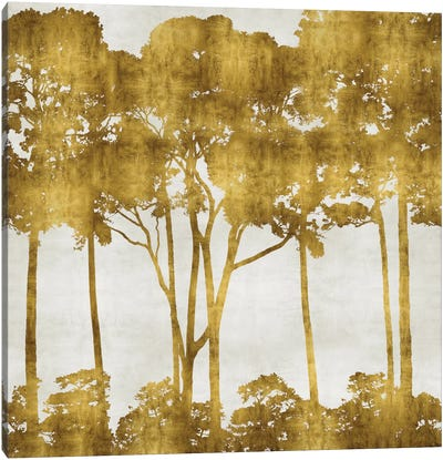 Tree Lined In Gold I Canvas Art Print