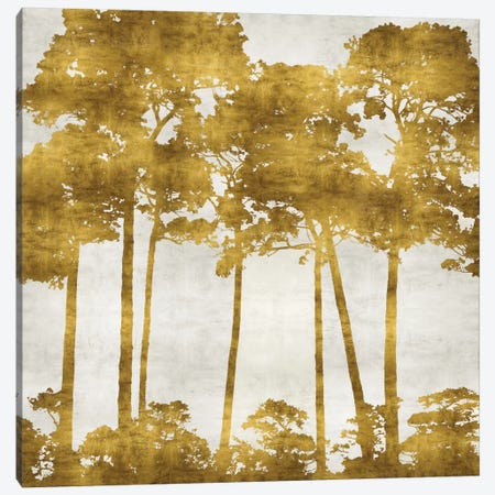 Tree Lined In Gold II Canvas Print #KAB42} by Kate Bennett Art Print