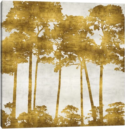 Tree Lined In Gold II Canvas Art Print