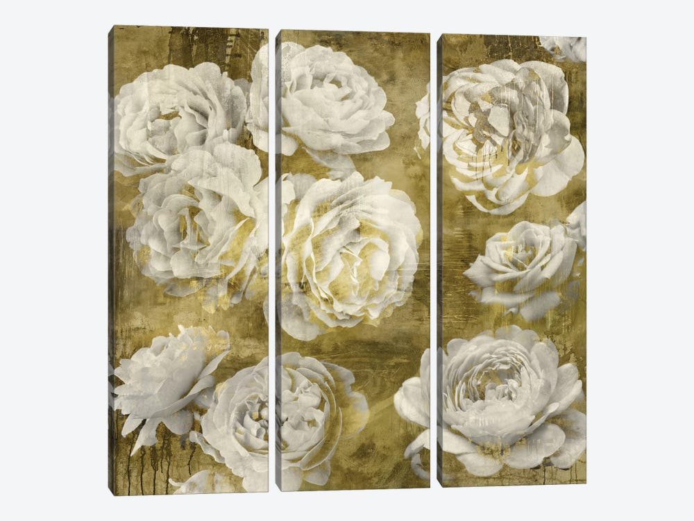 White In Gold by Kate Bennett 3-piece Canvas Artwork