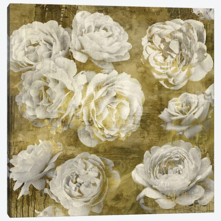 White In Gold Canvas Print #KAB43} by Kate Bennett Art Print