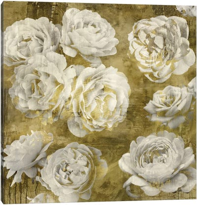 White In Gold Canvas Art Print